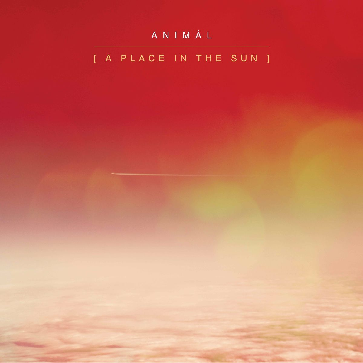 ANIMÁL A Place In The Sun
