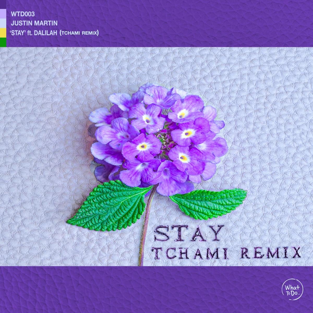 Tchami Remix (1)