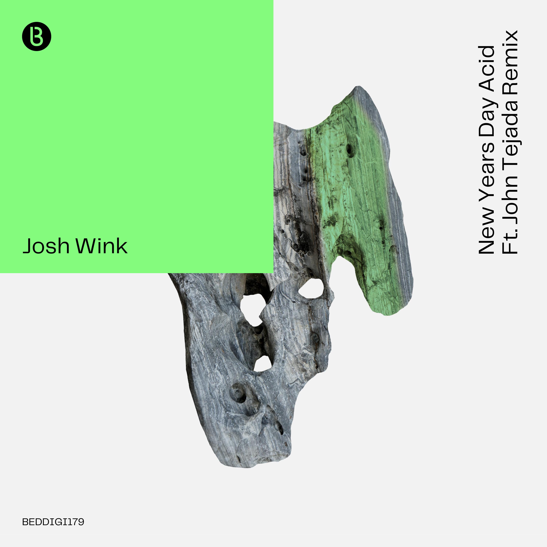 Josh Wink New Years Day Acid